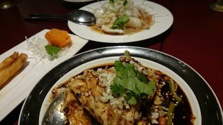 知味斎 - 海老の春巻き、ヨダレ鶏、イカの湯引き
