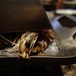 元 - 車海老の蒸し焼き