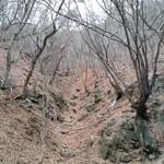 天下茶屋 - 旧国道137号線の山道です