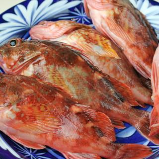 店主自ら釣った魚をご提供!天然物を召し上がれ◎