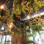 青山フラワーマーケット ティーハウス - ヒーリング・グリーンの店4