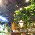青山フラワーマーケット ティーハウス - ヒーリング・グリーンの店5