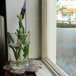 3984297 - はめ殺しの小窓を飾る花
