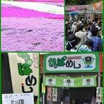 3988939 - 富士芝桜まつり