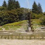 NOZY COFFEE - 噴水の周りの芝生には、みんな日焼け中!!