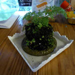 杉の茶屋 -