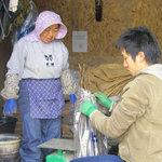 北海道正直村 - 追分町 飯浜さんの野菜は味がしっかりしている。