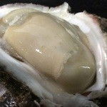 いか助 - 天然岩牡蠣