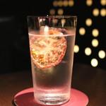 40036029 - Seasonal Gin Tonic (ドライトマト入り) (2015/06)