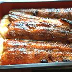 40048487 - 蒸しのはいっていない、よく焼けた鰻。昔から食べているのはこれですね。