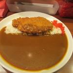 ナイル - ナイル伝説のロースカツカレー820円、金色に輝く広いナイル川をイメージして作られた平なお皿に平べったく乗せられたご飯にたっぷりのカレーをトッピングした料理です。