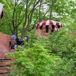 樹ガーデン - 木々の緑あふれる客席