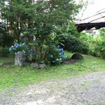 櫻山 - 店内から眺める庭園