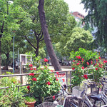 ランデヴー・デ・ザミ - 店前の西天満公園