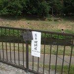 地球屋 - 野川に面した駐車場の番号です。