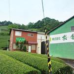 美土里屋 - 「美土里屋」から2キロ位の「放香堂」の茶畑。