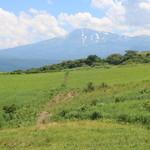 40151975 - 鳥海山も見えるロケーション