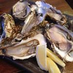 北海道知床漁場 - 牡蠣