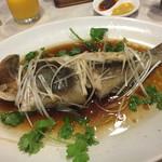 大鴻運天天酒楼 - 季節魚の蒸し広東風ネギ醤油がけ