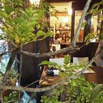 セレニータ - トネリコの奥に小さなテラス