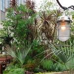 40203897 - ビアガーデンは植物に囲まれて