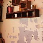 やまねこカフェ - 剥がれ落ちた壁が、お店に魅力を与えていますね