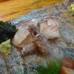 Shiduka - 真鯵・蝦蛄・イサキ