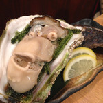 40265139 - 7年もの岩牡蠣