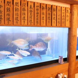 常時鮮度抜群の魚をお楽しみいただけます!