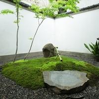 京町家 錦上ル - 中庭 / small courtyard