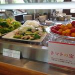 ポロシリ - 野菜料理がたくさん