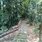 オーブン・ミトン カフェ - 竹林の中を下っていくと…