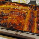 鰻作 - 大蒲焼重