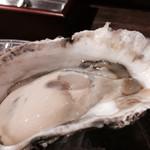 吉祥寺スパイラル - 三重 浦村の岩牡蠣