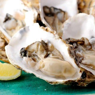 三陸の海が育てた最高級の生牡蠣「新昌」