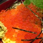 カネト水産 海の市 - いくら丼1500円
