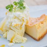 アクアサウスコースト - ベイクドチーズケーキ