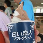 さっぽろ羊ヶ丘展望台 オーストリア館  - 白い恋人ソフトクリームのミックス 350円。       白い恋人チョコレート&北海道産生乳の組み合わせです。