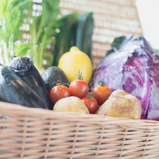 新鮮都筑野菜で地産地消