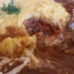 シャーロックホームズ - ハヤシソースのコクとお肉の旨みがいいですね~