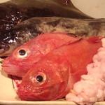 居間 - 産地直送の鮮魚