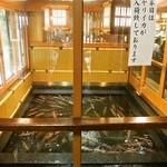 稚加榮 - ヤリイカ用の水槽がでかい!!