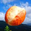 みうらベーカリー - 料理写真:バタートップ
