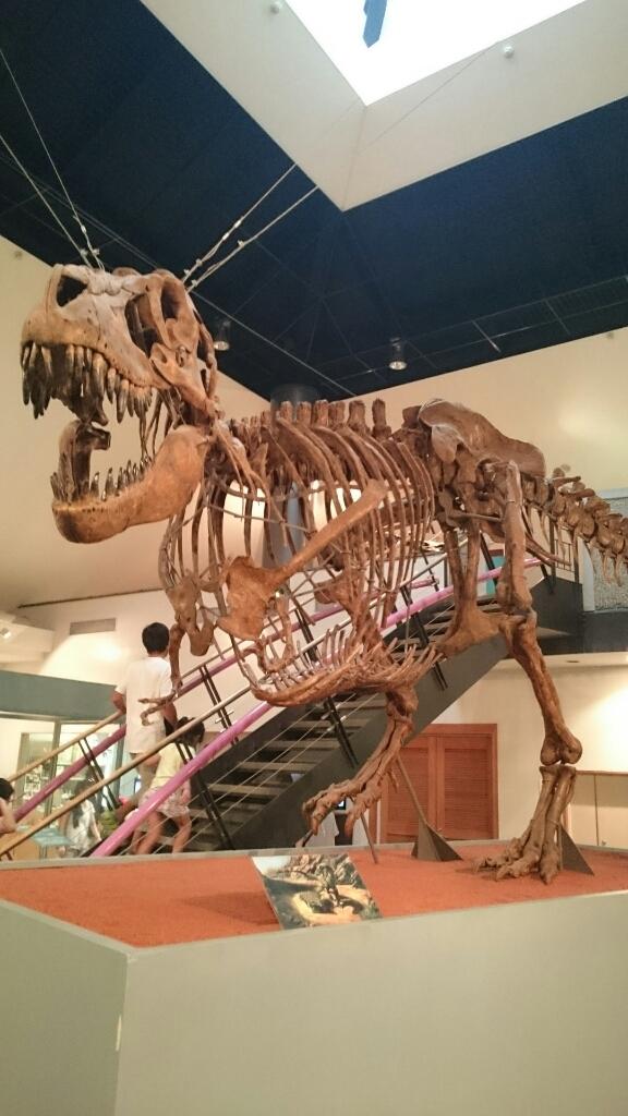 神流町恐竜センター 食堂