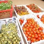 sumile TOKYO - 多種多様なトマトが直送