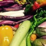 sumile TOKYO - 捥ぎたて届きたての彩豊かな有機野菜
