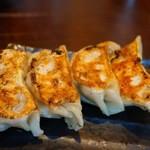 塩らー麺 本丸亭 - 本丸焼餃子