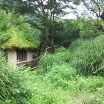 40988321 - 敷地内にあった水車小屋
