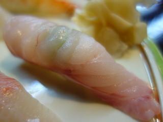 魚志 - アブラボウズ