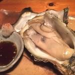 魚和食 浜菜虎 - デッカィ岩牡蠣(≧∇≦)